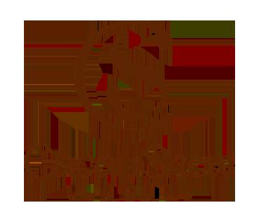 cacau-show_NEW